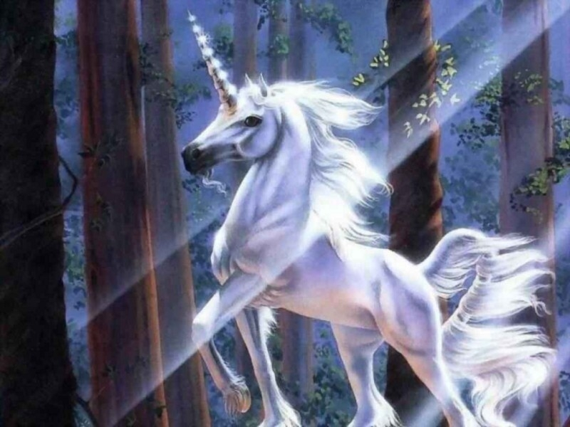 http://lamiastellina.altervista.org/fantasy/uni/24.jpg