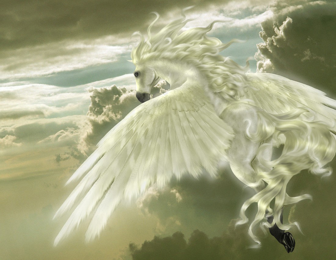 http://lamiastellina.altervista.org/pegasus/Pegasus14.jpg